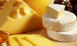 치즈 효능 9가지 치즈 부작용 확인하기