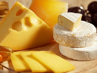 치즈 효능