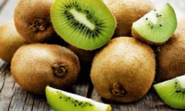 키위 효능 10가지 칼로리 정리